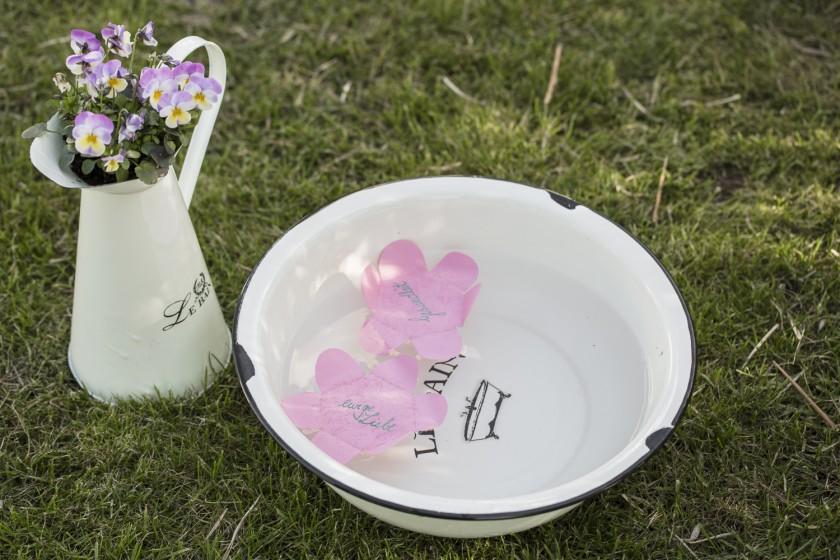 Wasserblüten - das etwas andere Gästebuch