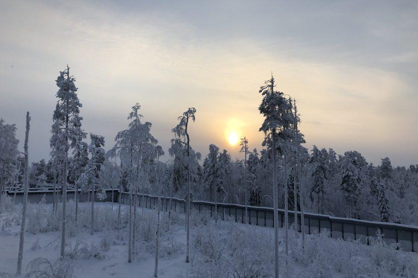 Mini Honeymoon in Ranua, Finnland